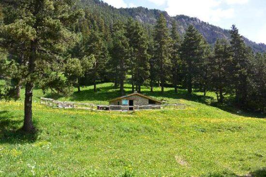 Cabane de la Jaceta