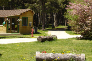 Camping du Lac***
