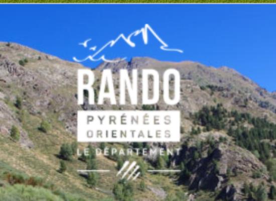 Rando66