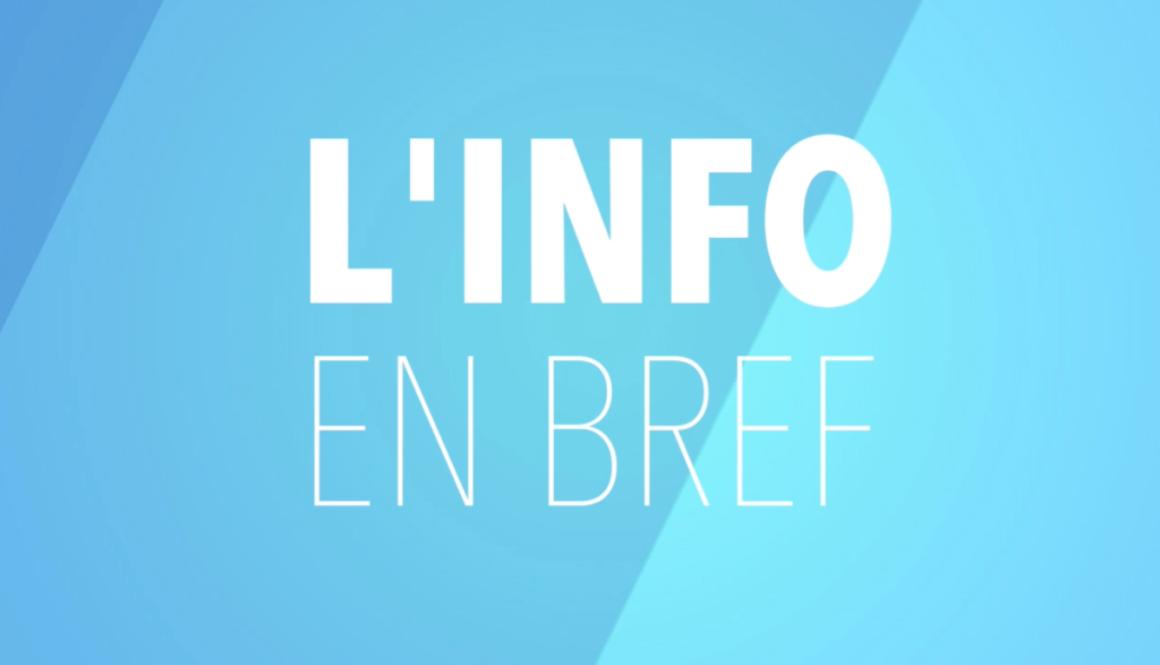 bref-2-1